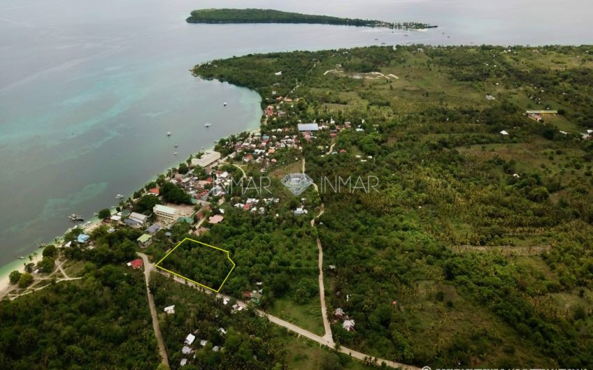 Lot ideal for Resort near white sand beach – Esperanza