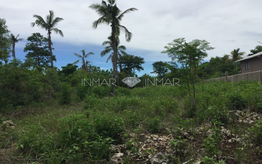 Lot for sale in a quiet place near the sea – Esperanza
