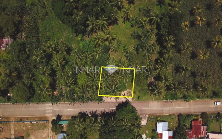 Fenced and Landscaped Property – Consuelo