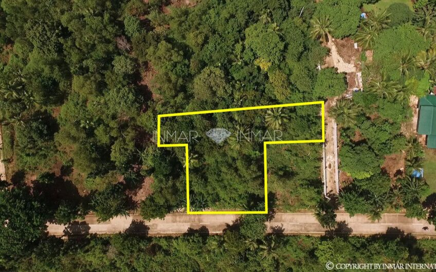 Property with a Building Permit for Sale