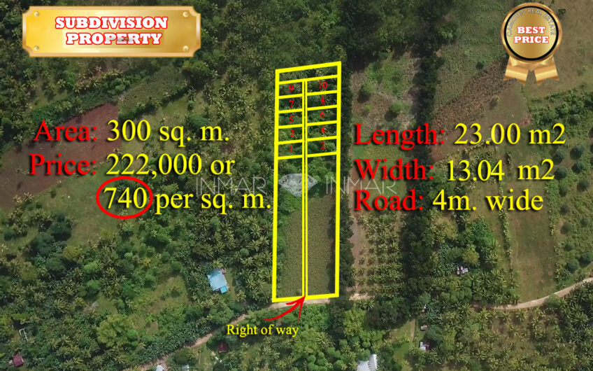 Subdivision Lot for Sale in a quiet neighborhood