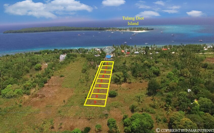 Subdivision Lot for Sale in Tulang Daku